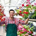 Grtnerei in einem Gewchshaus fr Blumen